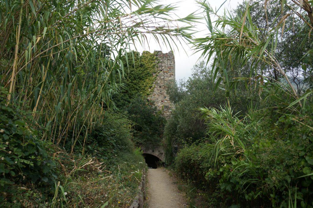 trekking-trail